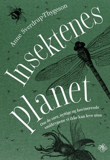 Insektenes planet : om de rare, nyttige og fascinerende småkrypene vi ikke kan leve uten