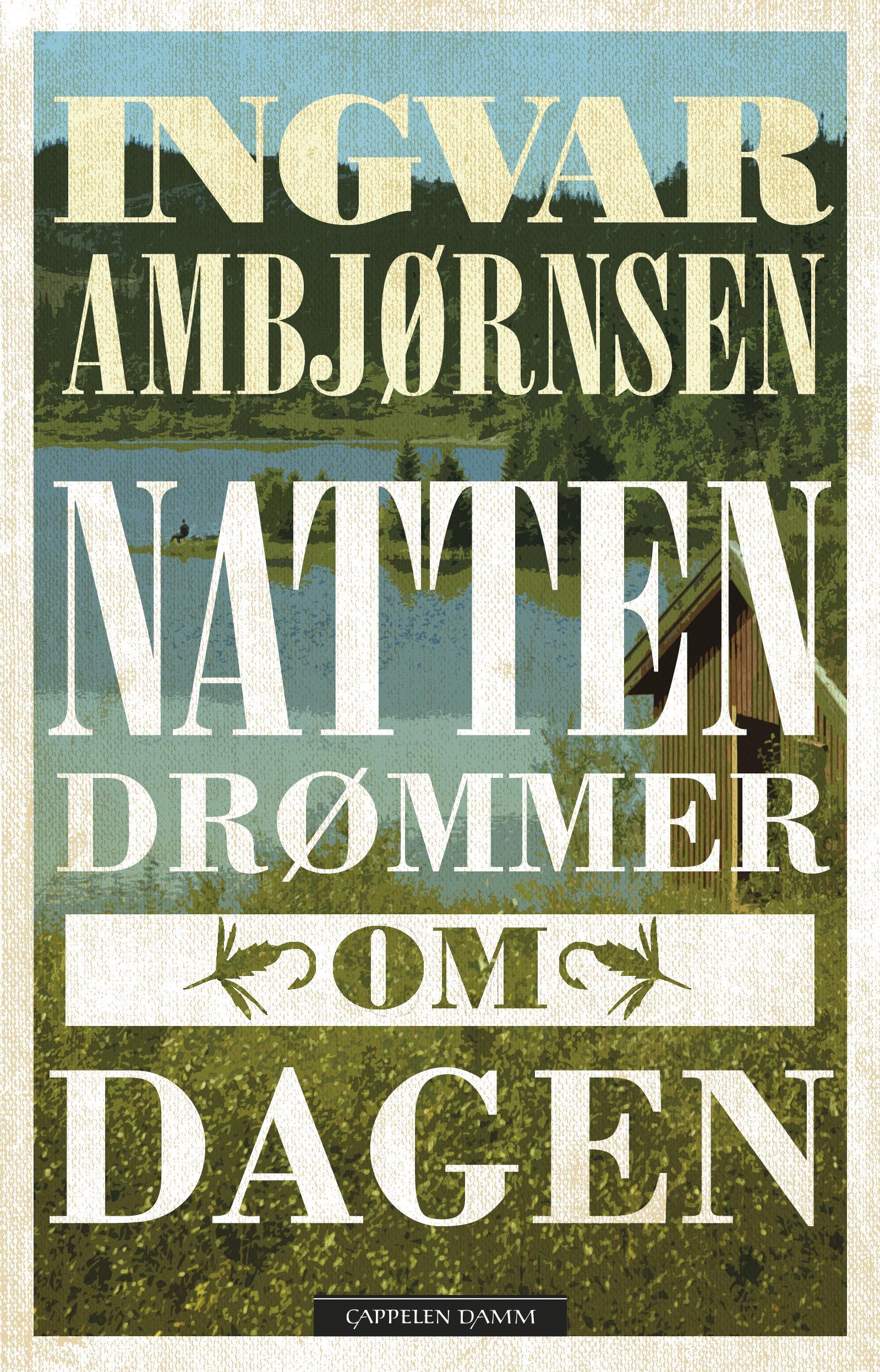 Natten drømmer om dagen : roman