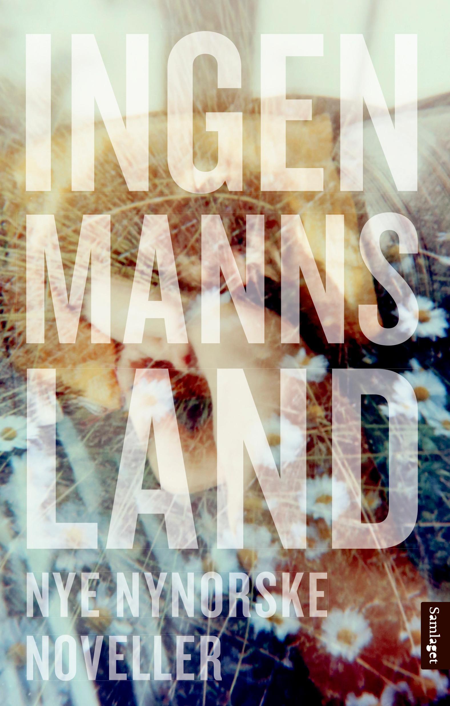 Ingenmannsland : nye nynorske noveller